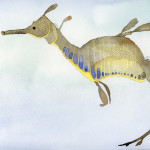 15 - Weedy sea dragon